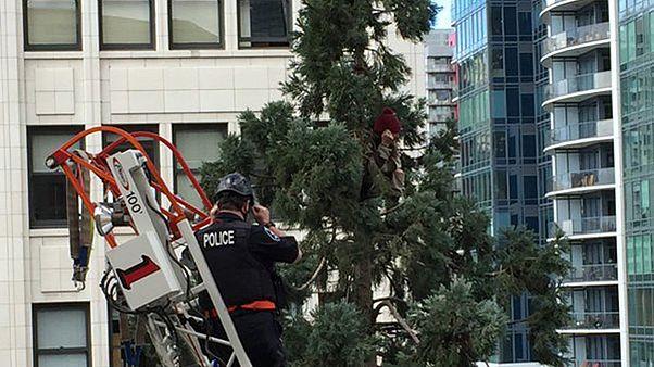 مرد درختی بازهم پلیس سیاتل را گرفتار خود کرد
