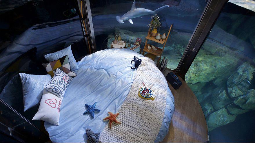 Dormir junto a tiburones en París