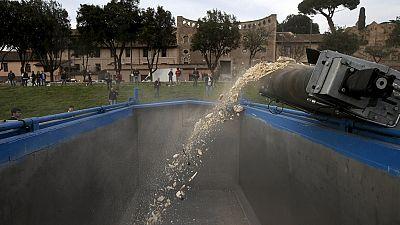 Italie : près d'une tonne d'ivoire réduite en poudre