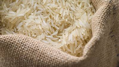 Égypte : suspension des exportations de riz