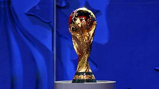 FIFA inspects 2018 World Cup venue at St. Petersburg