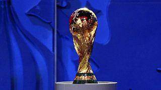Mondial 2018 : la FIFA inspecte le stade de Saint-Pétersbourg