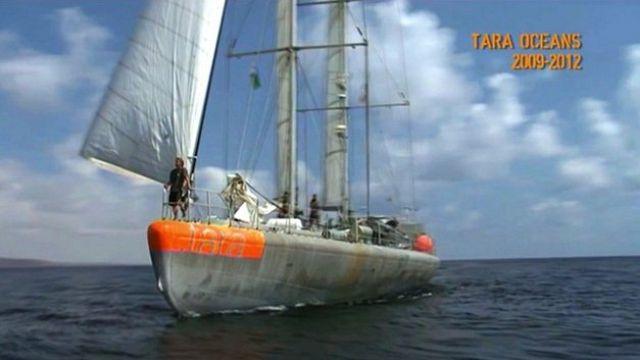 Tara reprend la mer