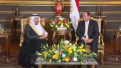 L'Égypte et l'Arabie saoudite créent un fonds d'investissement de 16 milliards de dollars
