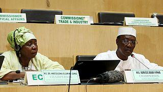 """Djibouti : les observateurs de l'Union africaine jugent """"crédible"""" le scrutin"""