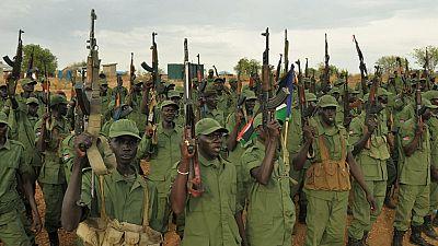 Soudan du Sud : arrivée des rebelles