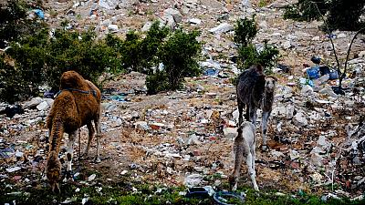 Tunisia struggles to solve waste management problems