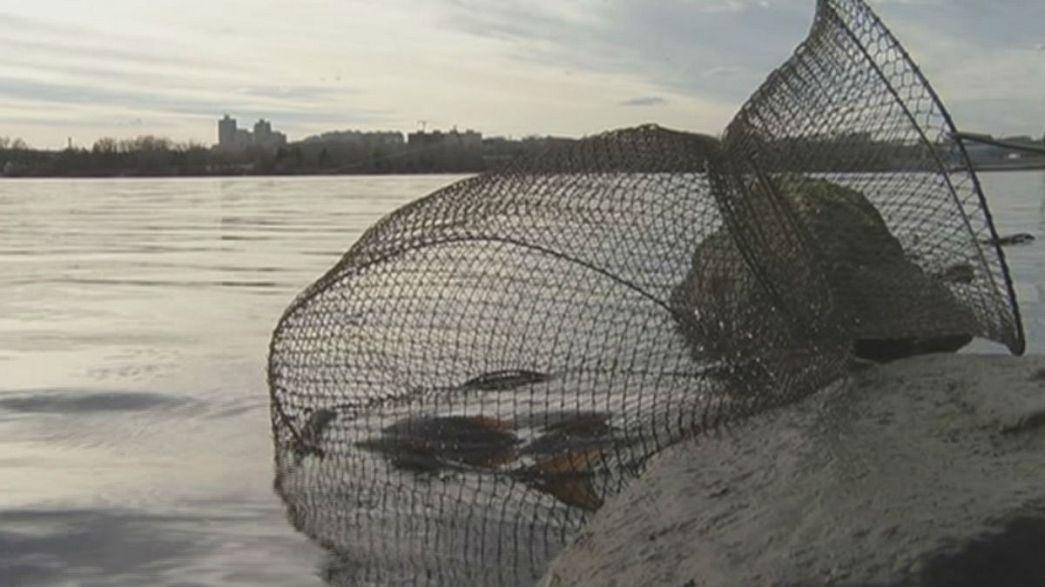 Kiev: Um lago de peixe radioativo