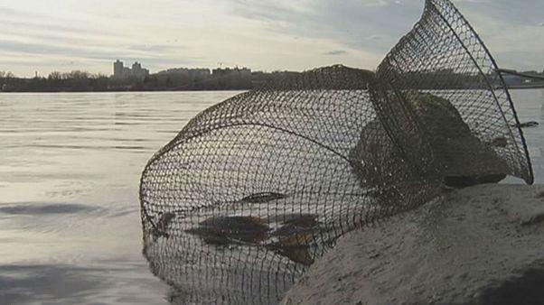 مواد پرتوزا در دریاچه کی یف یافت می شود