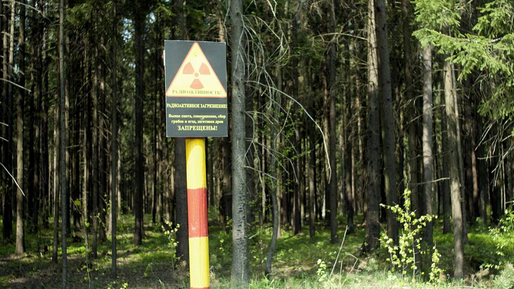 Belarus: the silent victim of Chernobyl?