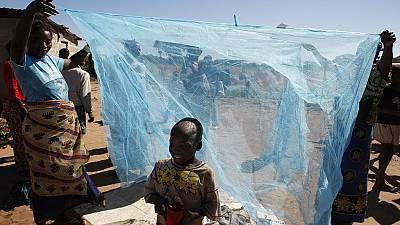 Six pays africains pourraient éradiquer le paludisme d'ici 2020