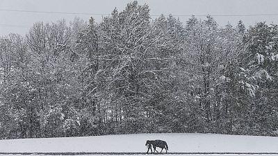 Winter strikes back