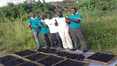 Cameroun : du charbon écologique pour lutter contre les coupes de mangroves