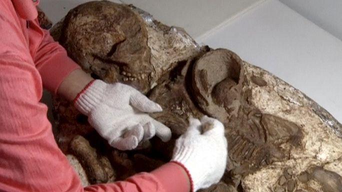 Tayvan'da bulunan anne kucağında bebek fosili arkeologları şaşırttı