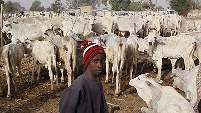 Nigeria : sept morts dans une attaque des éleveurs fulani contre un village d'agriculteurs