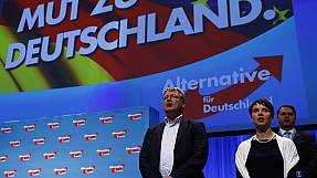 Germany's AfD party adopts anti-Islam manifesto