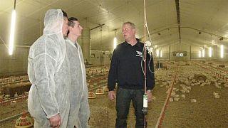مزارع لمراقبة الحيوانات بالتكنولوجيات الحديثة