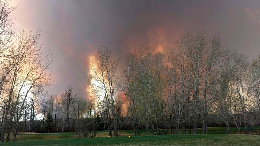 Канада: из-за лесных пожаров эвакуирован крупный город