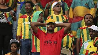 Poor AFCON showing forces Ethiopia to part ways with coach