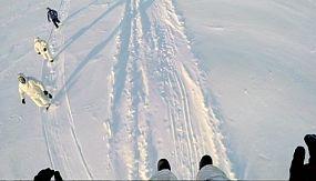nocomment: Exercices militaires au Pôle Nord