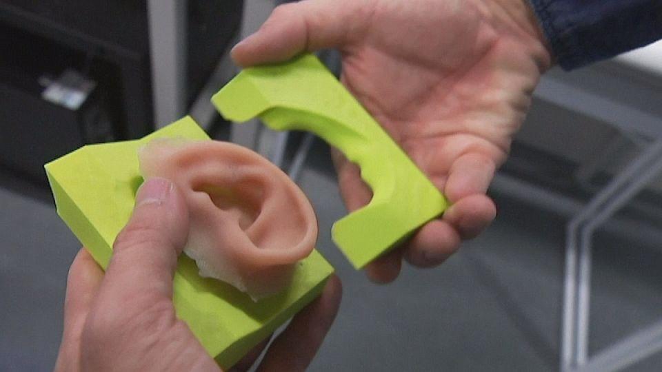 Des oreilles sorties d'imprimantes 3D