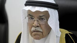Saudi Arabia oil minister sacked in major cabinet reshuffle