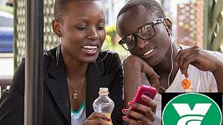 Kenya: 'Vibecampo' could be the next big social network