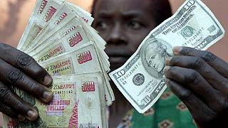 Zimbabwe opposition labels govt's 'local dollar' plan as 'madness'