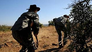 South Africa's traditional hunters not ready to give up their passion