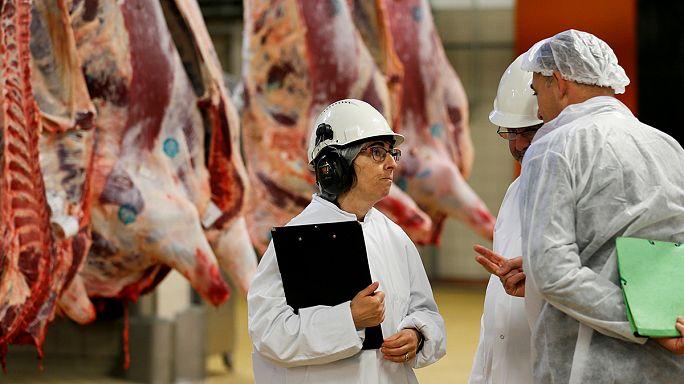 TTIP : les normes agricoles en question