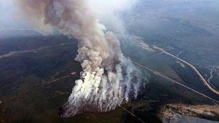 Лесные пожары в Канаде: огонь движется на юг, нефтяные компании возобновляют работу