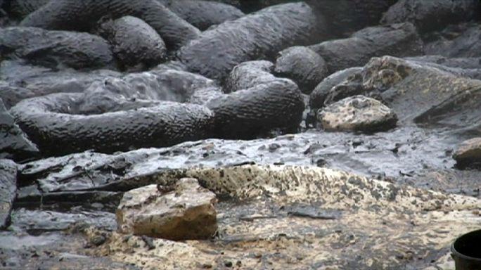 Hırvatistan kıyılarında petrol sızıntısı temizliği