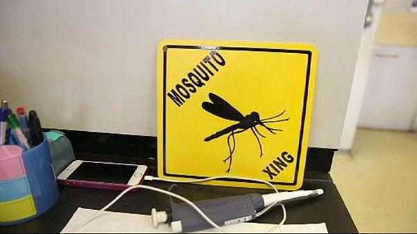 Las olimpiadas brasileñas amenazadas por el Zika