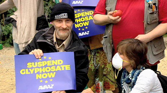 AB'de 'glyphosate yasaklansın' protestosu