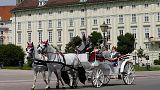 Österreich vor der Schicksalswahl