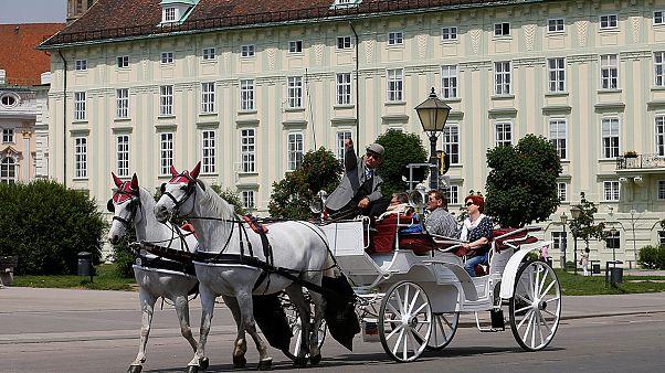 اليمين المتطرف يقترب من نيل منصب الرئيس في النمسا