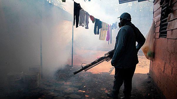 Zika virüsü Afrika'da