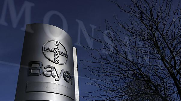 Világvezető GMO-céget venne a Bayer