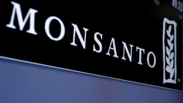 Monsanto: egyeseknek átok, másoknak áldás