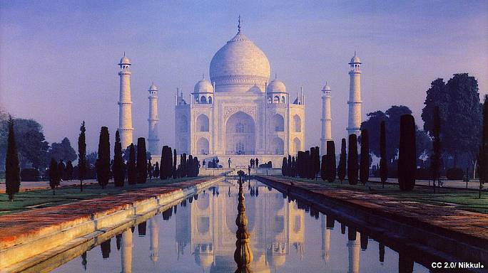 Insect excrement turning the Taj Mahal green