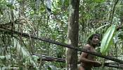 Video – Brazil's uncontacted Kawahiva tribe on the edge of extinction