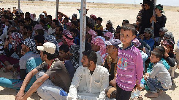 I civili lasciano Falluja prima della battaglia finale