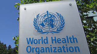 WHO downplays Zika virus threat to Rio Olympics