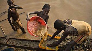 RDC : les effets de l'exploitation minière sur la nature