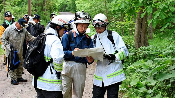Japón: siguen buscando a un niño abandonado por sus padres en un bosque como castigo
