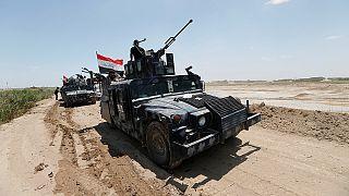 Gemeinsam gegen die IS-Miliz: Das Bündnis des irakischen Militärs mit Al-Haschd asch-Schaʿbī