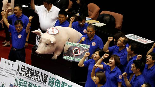 Piggy protest in Taiwan parliament