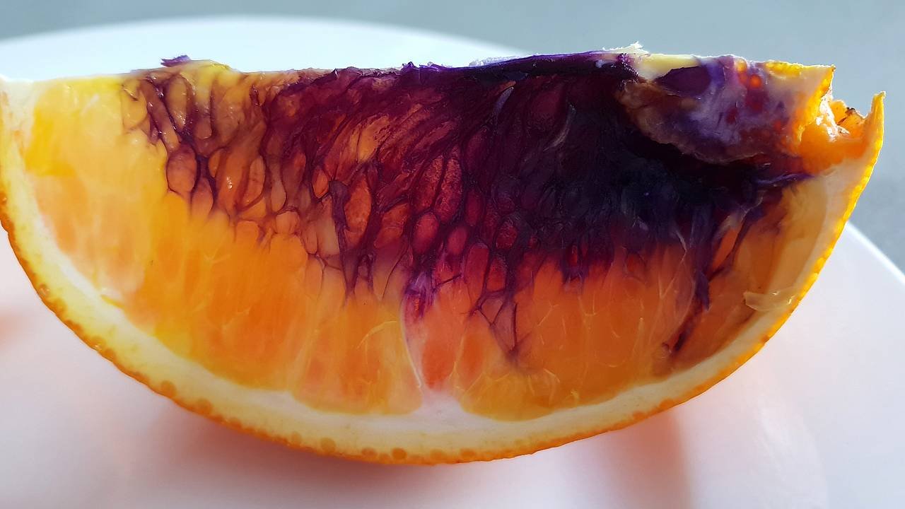 Australian woman sent this orange, which turned purple, to the Queensland H