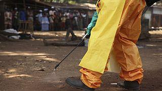 Guinée : l'OMS annonce la fin du second épisode d'Ebola