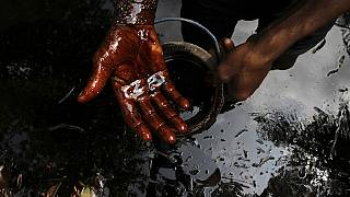 Buhari to kick off $1bn cleanup of oil ravaged Niger Delta region